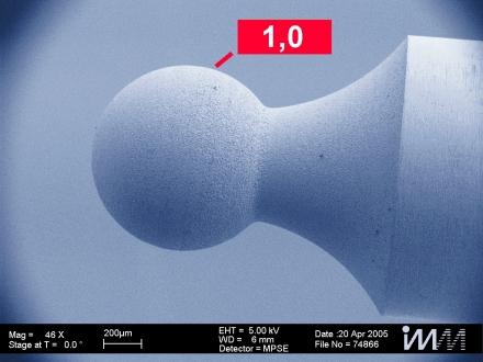 Anwendung Elektronenmikroskopaufnahmen